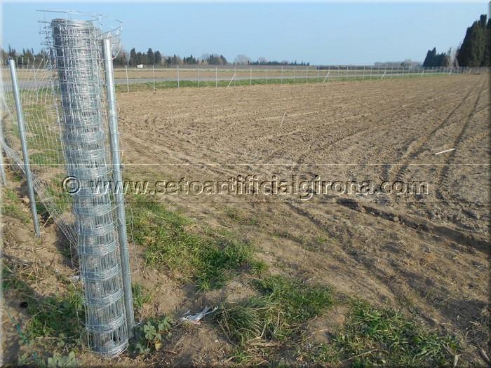 Clientes bruc natural girona vallas de brezo para jardin fabricantes de brezo natural girona - Precio vallar terreno ...